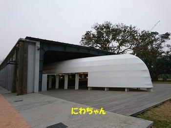 DSC_0826.JPG