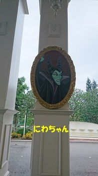 DSC_2766.JPG