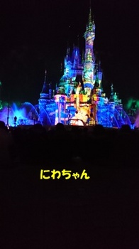 DSC_3216.JPG