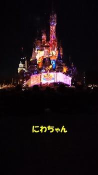 DSC_3239.JPG
